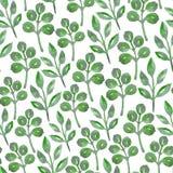 Naadloos ontwerp met groene waterverfinstallaties op witte achtergrond Stock Foto's