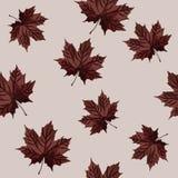 Naadloos op de herfstthema Stock Foto