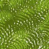 Naadloos palmbladenpatroon Stock Afbeeldingen