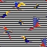 Naadloos patroon, achtergrond met vogels Vector illustratie royalty-vrije illustratie