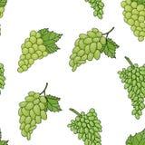 Naadloos patroon als achtergrond van druiven Stock Afbeeldingen
