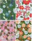 Naadloos patroon bloemen Stock Foto
