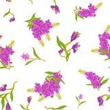 Naadloos patroon in Chamerion-angustifolium wilde bloemen Gevoelige boeketten Millefleurs van de vrijheidsstijl bloemen vector illustratie
