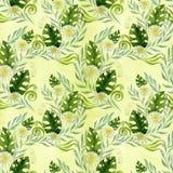 Naadloos patroon Een boeket van madeliefje bloeit - bloemen, bladeren op waterverfachtergrond vector illustratie