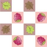 Naadloos patroon in een sectie met framboos Royalty-vrije Stock Foto's
