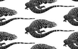 Naadloos patroon hagedissen vector illustratie
