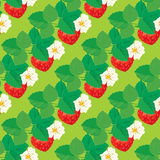 Naadloos patroon met Aardbeien met bloemen Stock Afbeelding