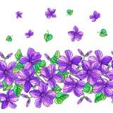 Naadloos patroon met altvioolbloemen en groene bladeren Stock Fotografie