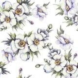 Naadloos patroon met anemonen De hand trekt waterverfillustratie Royalty-vrije Stock Afbeelding