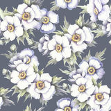 Naadloos patroon met anemonen De hand trekt waterverfillustratie Stock Afbeeldingen