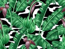 Naadloos patroon met banaanbladeren Decoratief beeld van tropische gebladerte, bloemen en vruchten Achtergrond royalty-vrije illustratie