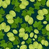 Naadloos patroon met bessenkruisbes Stock Foto