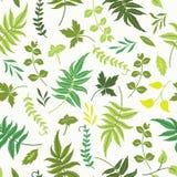 Naadloos patroon met bladeren vector illustratie