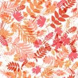 Naadloos patroon met bladeren Royalty-vrije Stock Fotografie