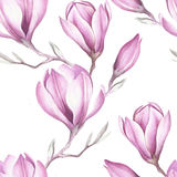 Naadloos patroon met bloeiend magnoliatakje De illustratie van de waterverf Royalty-vrije Stock Fotografie