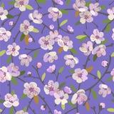 Naadloos patroon met bloeiende appeltakken De lente komt bloemenachtergrond tot bloei vector illustratie