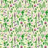 Naadloos patroon met bloemen en bladeren Stock Fotografie