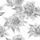 Naadloos patroon met bloemen Nam toe De illustratie van de waterverf Stock Afbeelding