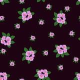 Naadloos patroon met bloemenachtergrond Stock Fotografie
