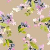 Naadloos patroon met bloemenwaterverf Zachte kleuren wijfje Royalty-vrije Stock Afbeelding