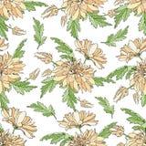 Naadloos patroon met boeketten van chrysanten Eindeloze textuur voor ontwerp uw groetkaarten, stoffenontwerp, huwelijk royalty-vrije illustratie