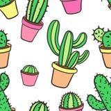Naadloos patroon met cactus Patroon van cactus Cactussen in potten royalty-vrije illustratie