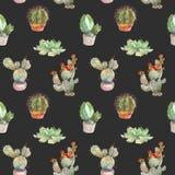 Naadloos patroon met cactus, succulents en bloemenelementen op donkere achtergrond Uitstekende botanische waterverf Stock Afbeeldingen