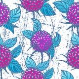 Naadloos patroon met chrysanten Stock Afbeelding