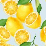 Naadloos patroon met citroenen Royalty-vrije Stock Foto