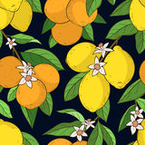 Naadloos patroon met citroenensinaasappelen Stock Foto's