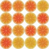Naadloos patroon met citrusvrucht Royalty-vrije Stock Foto's