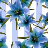 Naadloos patroon met de blauwe achtergrond van de leliestextuur stock illustratie