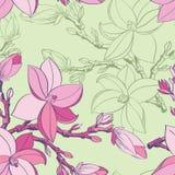 Naadloos patroon met de bloemen van de tekeningsmagnolia Stock Fotografie