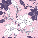 Naadloos patroon met de bloemen van de tekeningsmagnolia Stock Foto