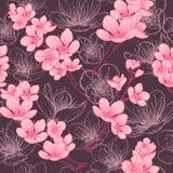 Naadloos patroon met de bloesem van de kersenboom Uitstekende hand getrokken vectorillustratie Royalty-vrije Stock Fotografie