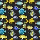 Naadloos patroon met de chirurg van waterverfvissen, goudvissen en andere oceanic vissen vector illustratie