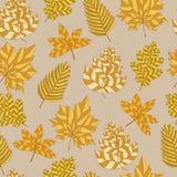 Naadloos patroon met de herfstbladeren Stock Foto's