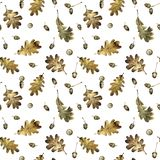 Naadloos patroon met de herfstbladeren van eik en eikels Hand getrokken illustratie met kleurpotloden stock afbeelding