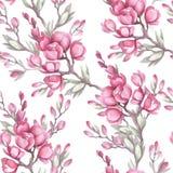 Naadloos patroon met de Japanse kweepeer De illustratie van de waterverf Stock Fotografie