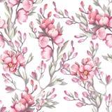 Naadloos patroon met de Japanse kweepeer De illustratie van de waterverf Royalty-vrije Stock Fotografie