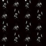 Naadloos patroon met de papaver van de contourtekening royalty-vrije illustratie