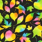 Naadloos patroon met decoratieve waterverf Stock Fotografie