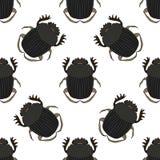 Naadloos patroon met dor-kever Geotrupidae hand-drawn dor-kever Vector stock illustratie