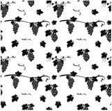 Naadloos patroon met druif op witte achtergrond Vectorillustra Stock Foto's