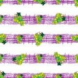 Naadloos patroon met druiven op stroken Stock Foto