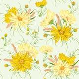 Naadloos patroon met gele kamillebloemen en gierst Rustiek bloemenontwerp stock illustratie