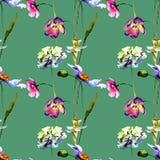Naadloos patroon met gestileerde wilde bloemen stock foto's