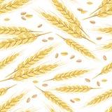Naadloos patroon met gouden oren van tarwe en korrels royalty-vrije illustratie
