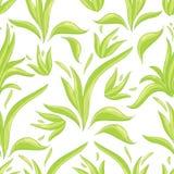 Naadloos patroon met gras Royalty-vrije Stock Afbeelding