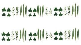 Naadloos patroon met groene bladeren Royalty-vrije Stock Afbeeldingen